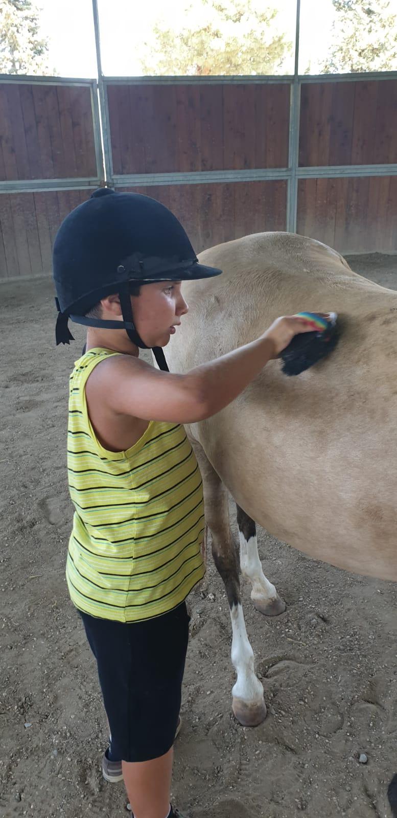 IAA – Interventi assistiti con gli animali