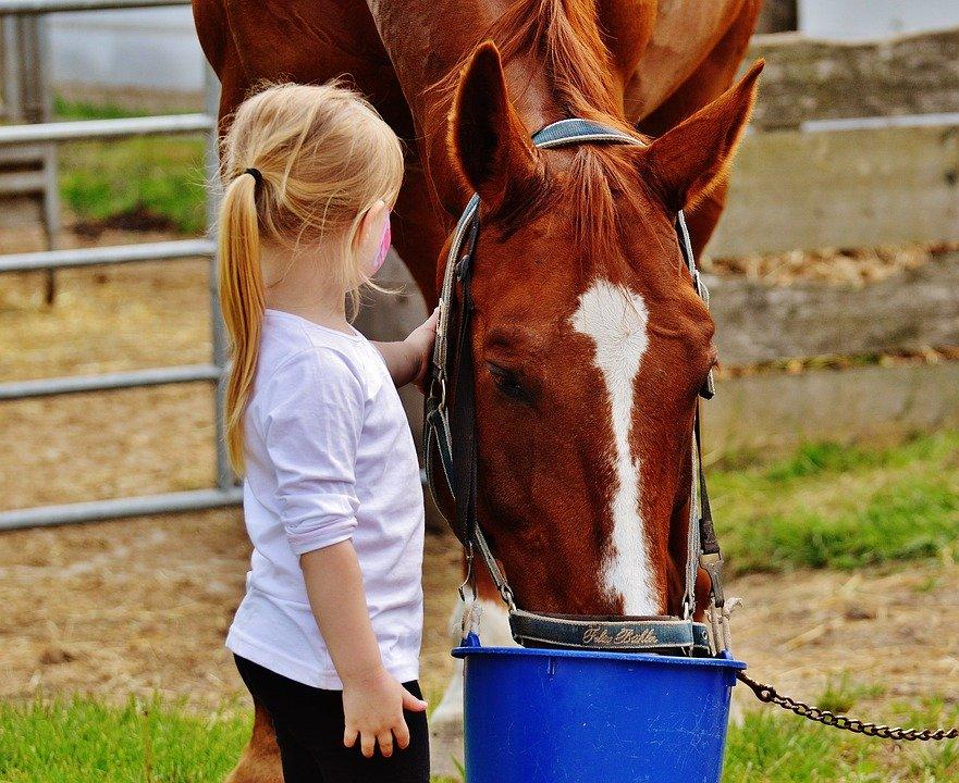 La testimonianza di Fabio e l'importanza del rapporto con gli animali