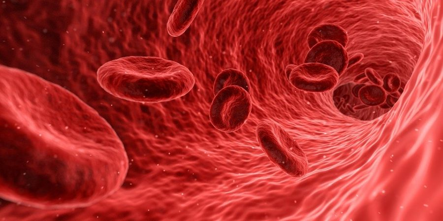 Immunodeficienze primitive: malattie congenite rare